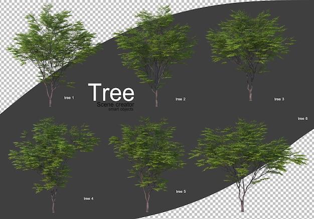 Vari tipi di rendering di alberi isolati
