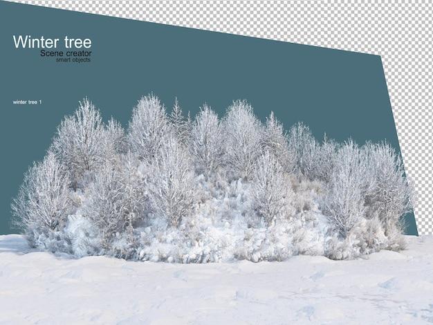 Vari alberi invernali design isolato