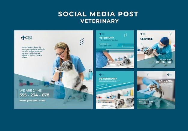Modello di post sui social media della clinica veterinaria