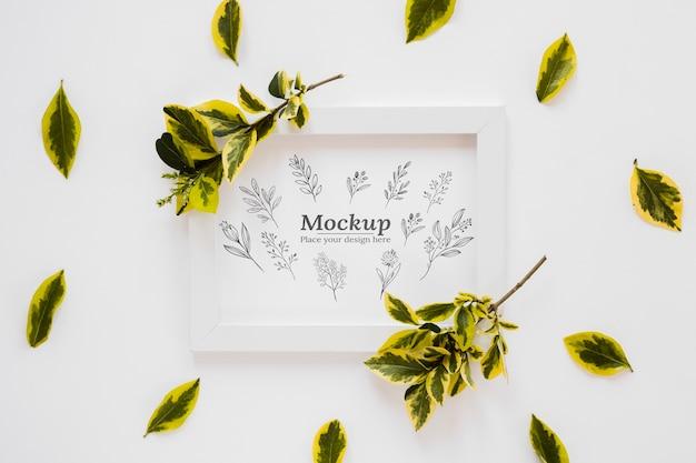 Sopra vista piante e cornice mock-up