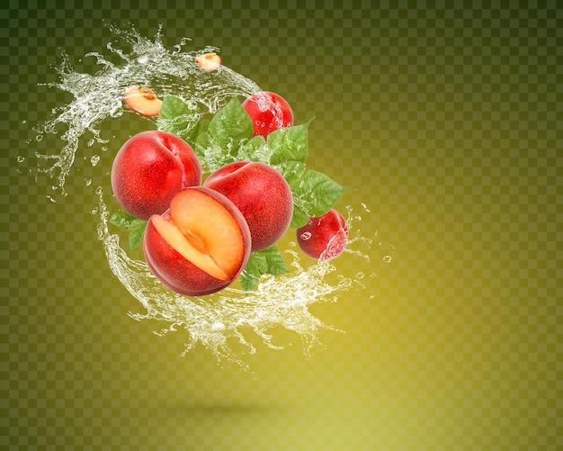 Spruzzi d'acqua sulla prugna rossa fresca con foglie isolate su sfondo verde. psd premium