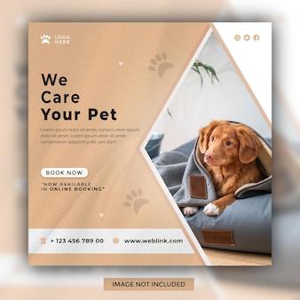 Ci prendiamo cura del tuo animale domestico modello di post sui social media instagram design