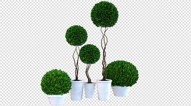 Rendering 3d di piante in vaso bianche
