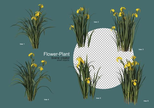 Un'ampia varietà di fiori e piante di varie forme