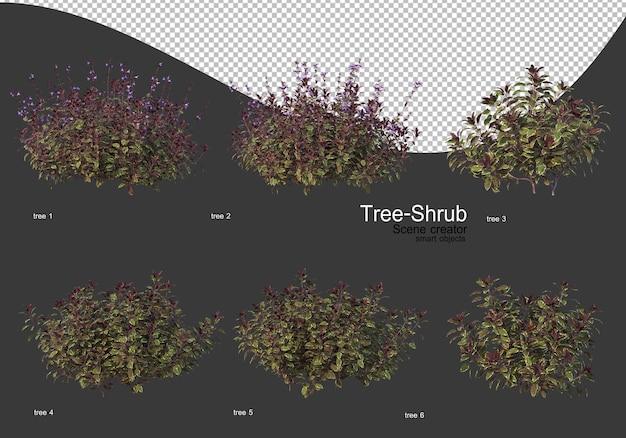 Ampia varietà di rendering di alberi e arbusti