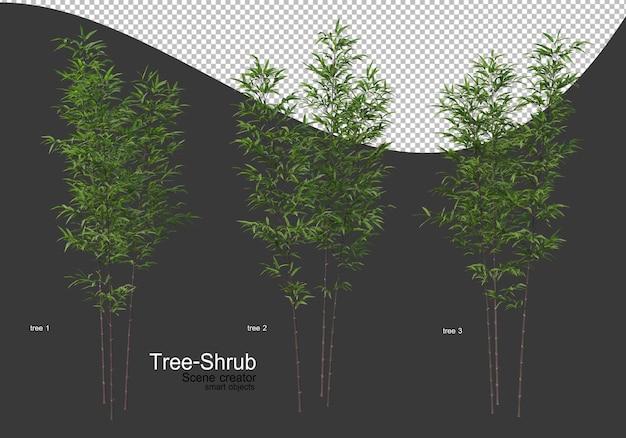 Ampia varietà di rendering di alberi e arbusti Psd Premium