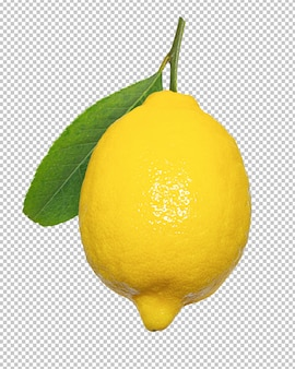 Limoni gialli su sfondo trasparente isolato