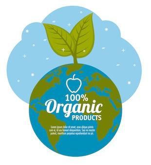 Etichetta dei prodotti organici di 100 per cento con il globo e il raccolto sopra l'illustrazione bianca di vettore del fondo