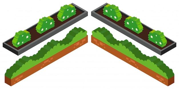 Progettazione 3d per cespugli in giardino