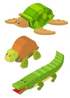Design 3d per tartaruga e coccodrillo