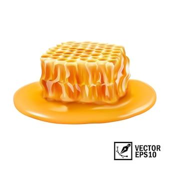 Fetta isolata realistica del favo 3d nella pozza del miele