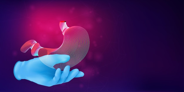Siluetta 3d di uno stomaco umano su una mano in un guanto di gomma blu. concetto medico anatomico con il contorno di un organo umano su sfondo astratto. illustrazione vettoriale in stile arte al neon