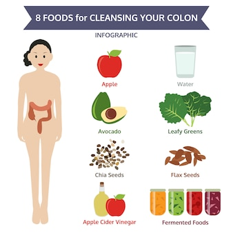 8 alimenti per la pulizia del colon, cibo grafico informativo