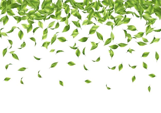 Sfondo astratto con foglie verdi che cadono