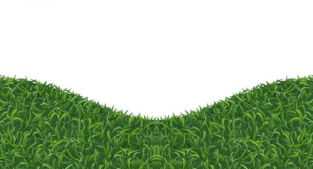 Struttura astratta dell'erba verde per fondo.