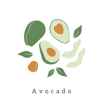 Frutta e foglie di avocado disegnate a mano astratte per cartoline, stampa, poster, copertine, ecc.
