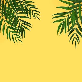 Fondo tropicale di foglia di palma verde realistico astratto.