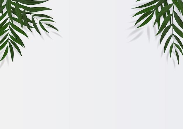 Foglia di palma verde realistica astratta tropicale
