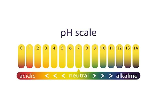 Scala di acidità della cartina tornasole, sfumatura di colore. illustrazione vettoriale di un grafico del ph
