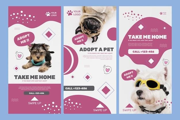 Adotta un modello di storie di instagram per animali domestici