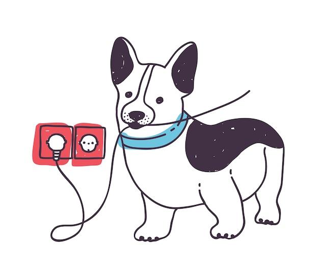 Adorabile cane che rosicchia o mangia fili