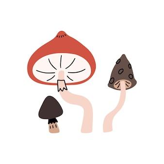 Adorabili illustrazioni di funghi disegnate a mano. clipart di funghi vettoriali.