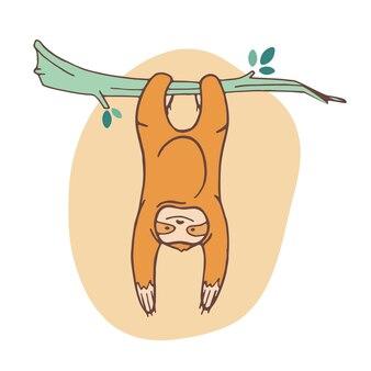 Adorabile bradipo aggrappato al ramo e appeso.