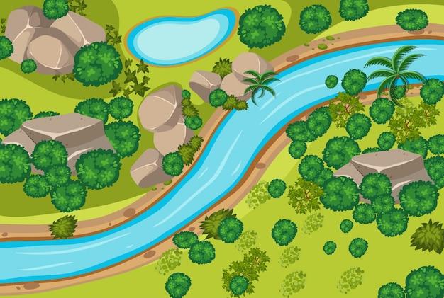 Veduta aerea della foresta e del fiume