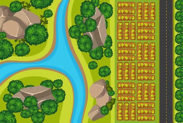 Veduta aerea dell'orto