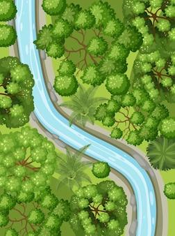 Vista aerea con il fiume attraverso il paesaggio della foresta