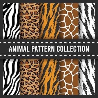 Modello senza cuciture stampa animali africani