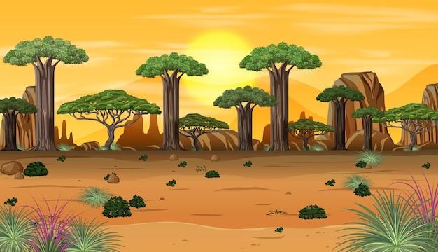 Paesaggio della foresta africana al tramonto