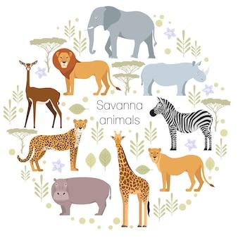 Leone africano del ghepardo dell'elefante degli animali della savanna