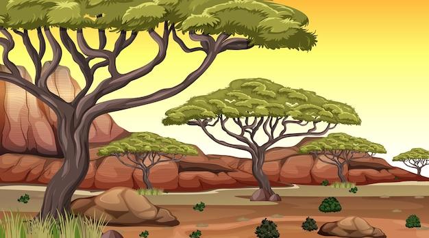 Scena del paesaggio della foresta della savana africana all'ora del tramonto