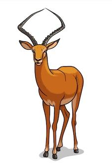 Antilope della savana africana isolata nello stile del fumetto. illustrazione educativa di zoologia, immagine del libro da colorare.