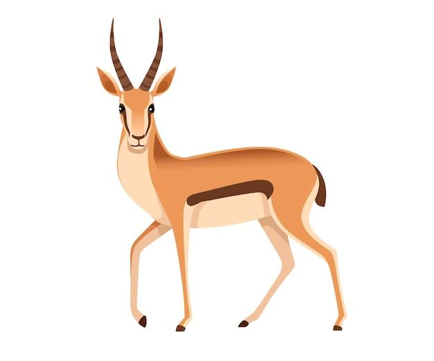 Gazzella dalla coda nera selvaggia africana con le corna lunghe illustrazione animale del fumetto vista frontale