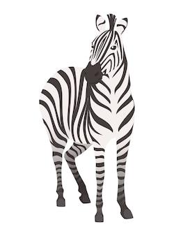 Illustrazione piana di vettore di progettazione animale del fumetto di vista frontale della zebra africana