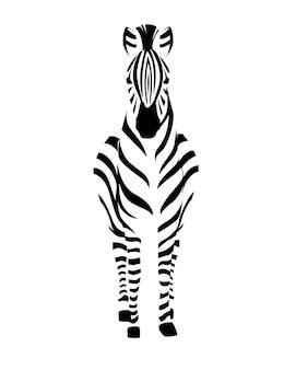 Zebra africana vista frontale contorno silhouette a strisce design animale piatto illustrazione vettoriale