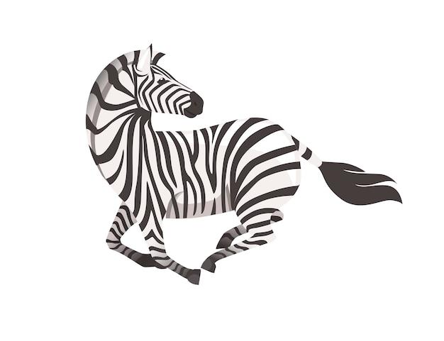 Zebra africana che corre con la testa guarda indietro vista laterale cartone animato design animale piatto illustrazione vettoriale
