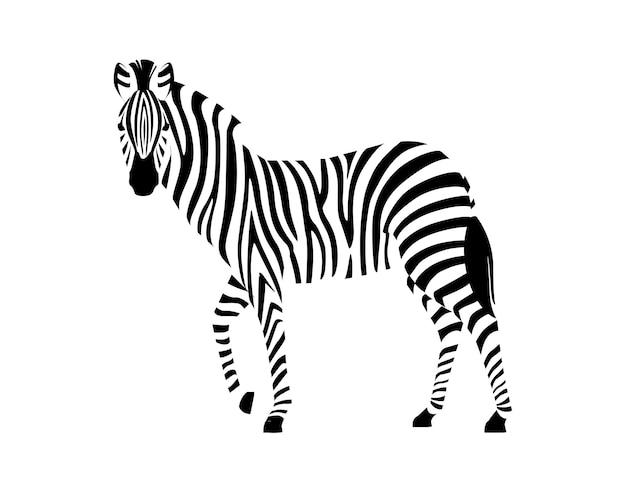 Zebra africana vista laterale contorno silhouette a strisce design animale piatto illustrazione vettoriale