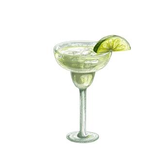 Margarita cocktail alcolico con fetta di lime. illustrazione disegnata a mano di colore di tratteggio di vettore dell'annata isolata su fondo bianco