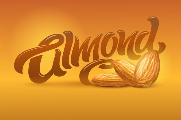 Scritta almond con illustrazione realistica di mandorle su sfondo marrone. modello per packaging design, print design, cartolina, banner, etichetta, poster, sfondo.