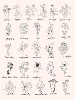 Alfabeto fiore illustrazione vettoriale set di fiori con scritte