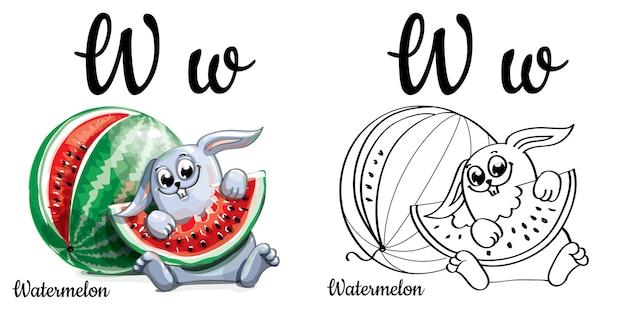 Lettera w dell'alfabeto per l'educazione dei bambini con anguria e coniglio divertenti del fumetto. isolato. imparare a leggere. pagina da colorare.
