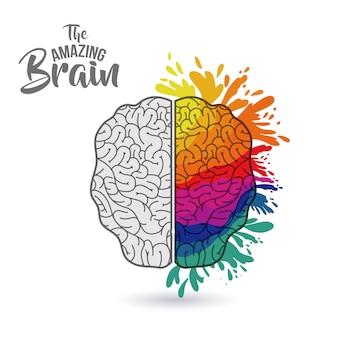 Il disegno di illustrazione vettoriale isolato cervello sorprendente