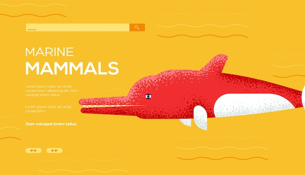 Volantino del concetto di delfino del fiume amazon, banner web, intestazione dell'interfaccia utente, entra nel sito .