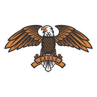 Aquila calva americana, illustrazione di aquila in volo