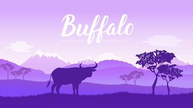 Bisonte americano, bufalo in piedi nella prateria di erba alta con nebbia leggera