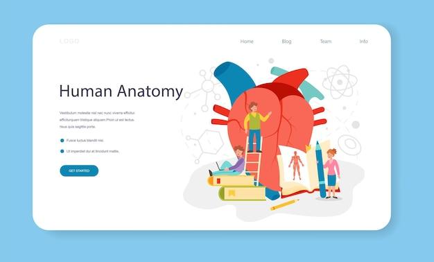 Banner web di materia scolastica di anatomia o organo umano interno della pagina di destinazione
