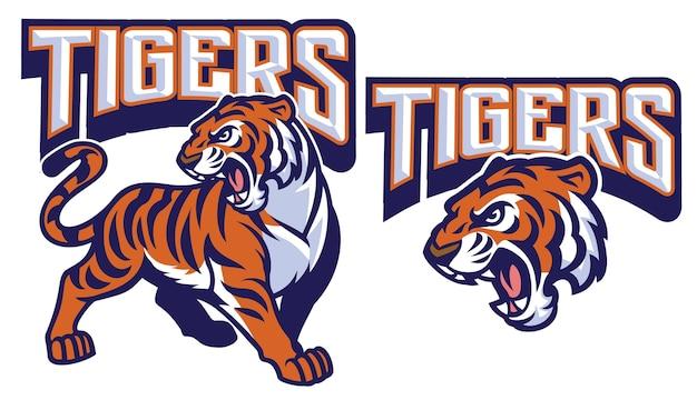 Mascotte arrabbiata della tigre isolata su bianco